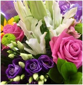 Pink, Purple and White Mix (Florist Choice)