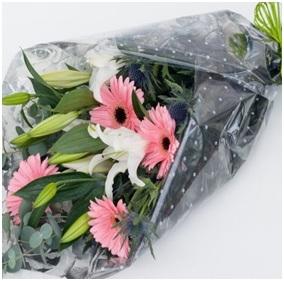 Gerbera and Lily Wrap (Florist Choice)
