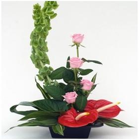 Modern Arrangement (Florist Choice)