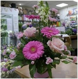Cascade (Florist Choice)