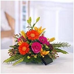 Bright Posy (Florist Choice)