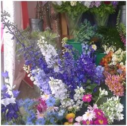Bright Mix Bouquet (Florist Choice)