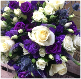 Violeta (Florist Choice)
