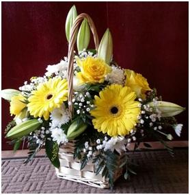 Mixed Basket (Basket will vary, Florist Choice)
