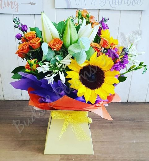 Large Planted Basket (Florist Choice)