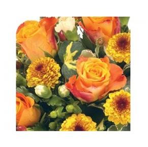 Planted Arrangement (Florist Choice)