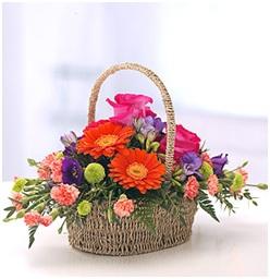 Vibrant Basket (Florist Choice)