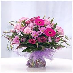 Soft Aquapack (Florist Choice)