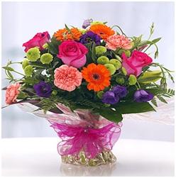 Vibrant Aquapack (Florist Choice)
