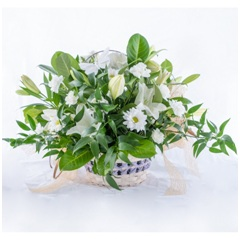 All White Basket (Florist Choice)