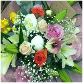 Soft Mix (Florist Choice)