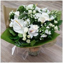 Wonderful Whites (Florist Choice)