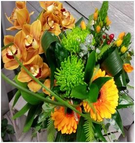 Orchid Arrangement (Florist Choice)