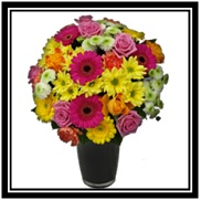 Bright Florist Choice Aqua