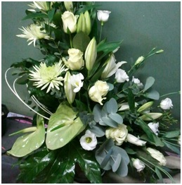 Mixed Arrangement (Florist Choice)