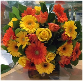 Mixed Arrangement (Container will Vary, Florist Choice)