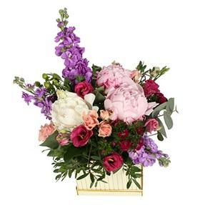 Seasonal Flower Box (Starts from €53.00...)