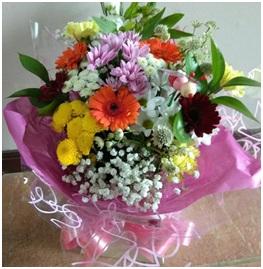 Bright HT (Florist Choice)