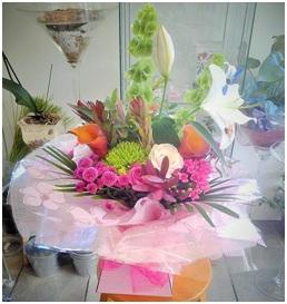 Bright Mixed Aqua Box (Florist Choice)