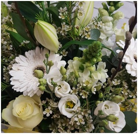 Seasonal Aqua (Florist Choice)