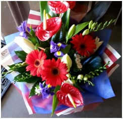 Mixed Colourful Arrangement