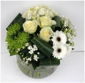 Serenity (Florist Choice)
