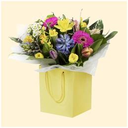 Spring Aqua (Florist Choice)