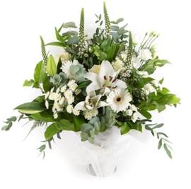 Dream (Florist Choice)
