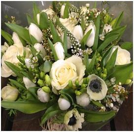 White Sensation (Florist Choice)