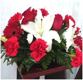 Red and White Mix (Florist Choice)