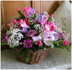 Seasonal Basket (Florist Choice based on Ocassion)