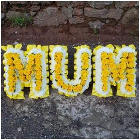 Mellow Yellow Mum Tribute