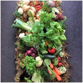 Natural Vegetable Tribute