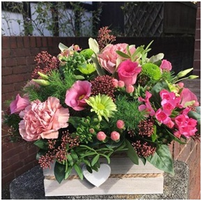 Arrangement (Florist Choice, Container may Vary)