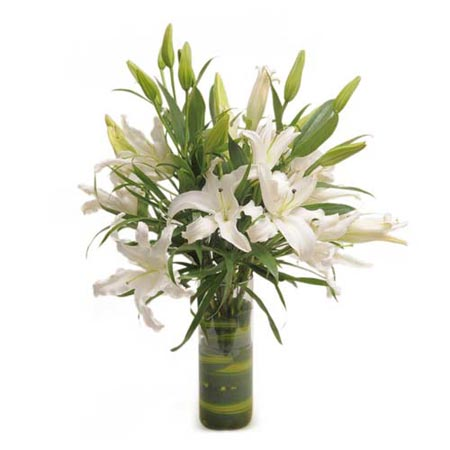 Oriental Lilies in a Glass Vase