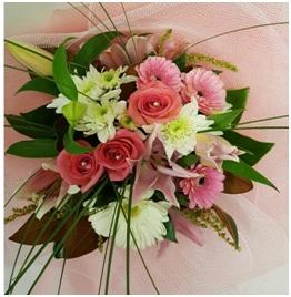 Flamingo (Florist Choice)