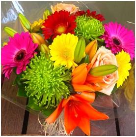 Colour Burst (Florist Choice)