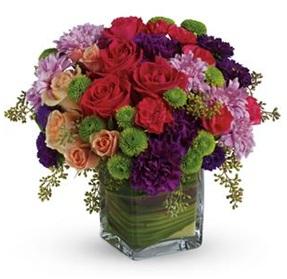 One Fine Day (Florist Choice)