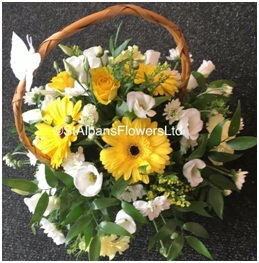 Mixed Basket (From...)