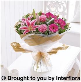 Pink Radiance HT (Florist Choice)