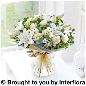 Wonderfully White HT (Florist Choice)