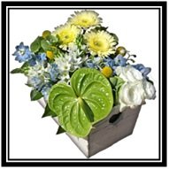 Mixed Trug Arrangement