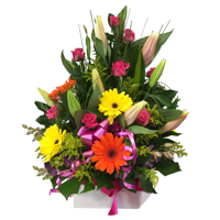WRF30 - Candy: Lge armnt, Gerberas, Roses, Lilies