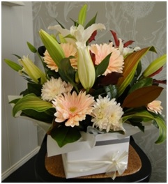 Posy Box Arrangement (Florist Choice)