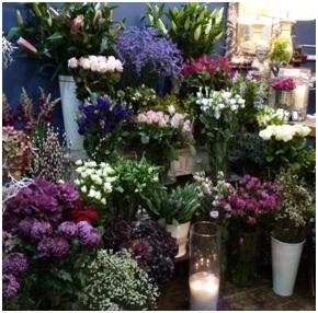 Florist Choice Mixed Bouquet