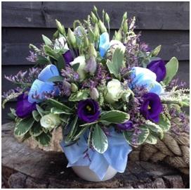 Baby Boy Arrangement (Florist Choice)