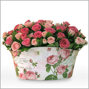 Composition from pink button roses placed in a metal basket