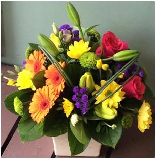 Mixed Arrangement (Pot will Vary, Florist Choice)