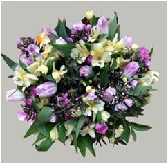 Lemon and Pink Charm HT (Florist Choice)