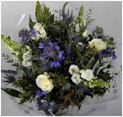 Sea Breeze HT (Florist Choice)